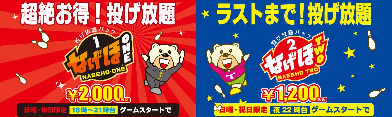 top_image_nageho