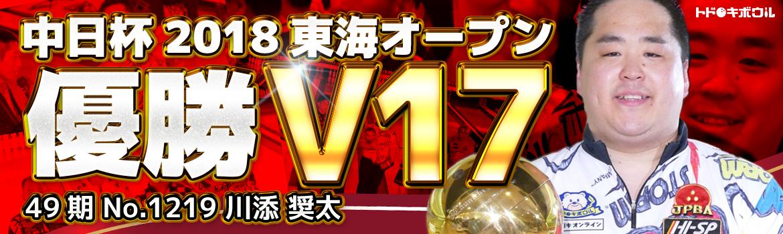 V17_hp_banner